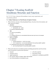 all grade worksheets chapter 3 cell structure and function