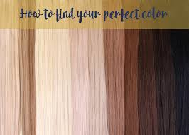 Choosing The Right Hair Color Barely Xtensions Blog