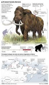 pleistocene megafauna 2588000 11700 mammals