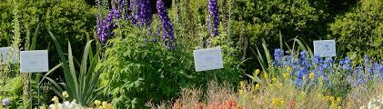 florida gardening calendar uf ifas extension