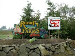 Roloffs Pumpkin Patch In Hillsboro Or by 10 Best Pumpkin Patches Across America Group Tours