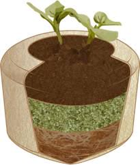 biodegradable urn biodegradable urns that will turn you into a tree after you die