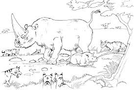 animal habitats coloring pages www mindsandvines com
