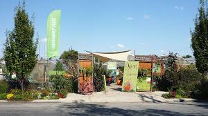 native plant nursery pa philly u0027s best local plant shops and garden centers