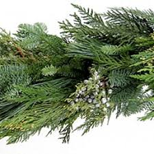 wholesale fresh evergreen wreaths garlands non profit