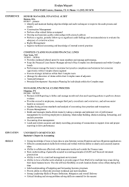 resume template for senior accountant duties ach drafts manager financial resume sles velvet jobs