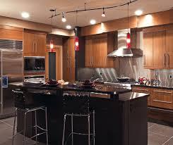Modern Cherry Kitchen Cabinets Door Style Summit Design Style Contemporary Room Kitchen Wood