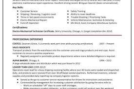 Logistics Job Description Resume by Logistics Analyst Resume Template Best Business Analyst Resumes