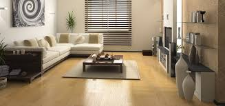 Laminate Floor Cleaning Company Carpet Cleaning Abilene Tx Pet Stain Removal U0026 Water Extractions