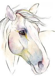les 10 meilleures images du tableau cheval sur pinterest dessins