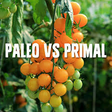 paleo vs primal which way of eating is best paleo grubs