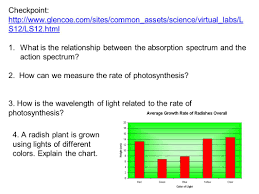 glencoe virtual light lab co 7 chapter 7 photosynthesis name a plant you have seen recently