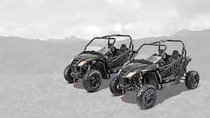 side by sides arctic cat