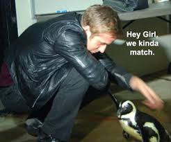 Best Memes Of 2011 - the 10 best memes of 2011 gurl com gurl com