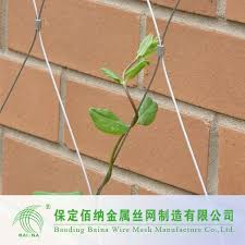 Climbing Plant Supports - steel life picture more detailed picture about metal climbing