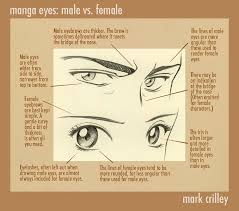 Male And Female Anatomy Differences Manga Eyes Male Vs Female By Markcrilley On Deviantart