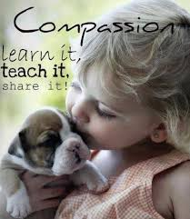 quote kids compassion learn it share quote pic cute animal kids pictures