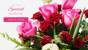 forever roses centennial florist flower delivery by forever flowers