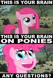 Bronies Meme - image 190051 pony meme and pinky pie