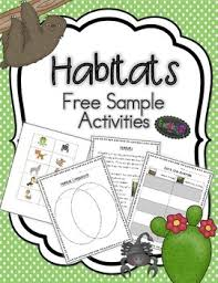 habitats rainforest and desert free activities by greatminds123