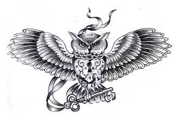 26 best celtic owl tattoo sketches images on pinterest owl