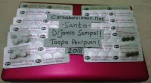 Obat Invitec Misoprostol jual obat aborsi misoprostol cytotec 200mcg pg pfizer asli