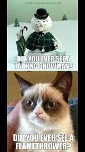 Angry Cat Memes - grumpy cat grumpy cat meme grumpy cat funny for the best humour