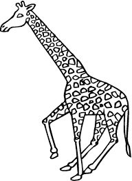 giraffe pictures to color