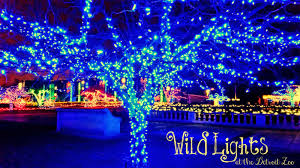 Zoo Lights Ohio by Experience Childhood Wonder At The Detroit Zoo Wildlights