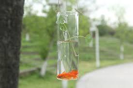 glass cylinder wall vase for hydroponic glass terrarium aquarium