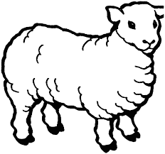lamb clipart black and white pencil and in color lamb clipart