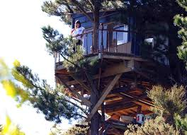 awesome best hut treehouse in new zealand has a remote controlled
