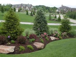 Backyard Landscaping Company Evergreen Privacy Screen Gardens That Inspire Pinterest