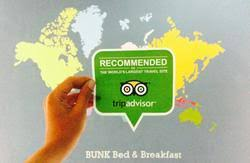 Bunk Bed And Breakfast Bunk Bed And Breakfast Yogyakarta Book Hostel At Hostels Com