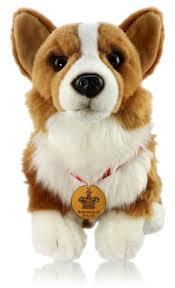 251 best corgis images on pinterest animals corgi puppies and