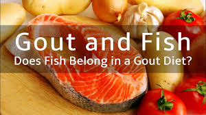 gout gout and fish does fish belong in a gout diet