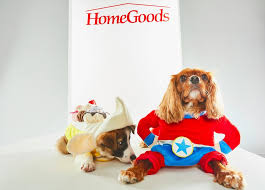 Halloween Costumes For Dogs Pet Halloween Costumes From Homegoods Popsugar Home