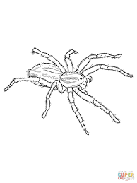 Creepy Halloween Coloring Pages by Spider Coloring Pages Printable Coloring Home