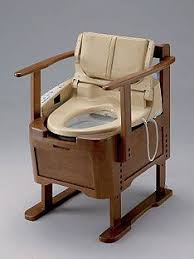 Comfortable Toilet Seats Best 25 Toilet Chair Ideas On Pinterest Portable Camping Toilet
