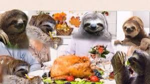 sloth sloth thoughts