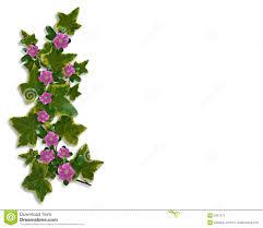 ivy floral design border element stock photography image 5957272