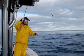 reel deal fishing charters cape cod fishing charters in truro