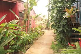 banana bungalow maui hostel maui hawaii reviews hostelz com