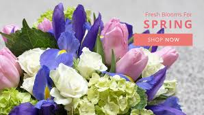 flower delivery miami miami florist flower delivery by perak florist