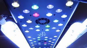 t5 vs led grow lights best grow light indoor growing reef breeders led t5 lighting youtube
