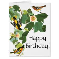 happy birthday vintage birds cards photocards invitations more