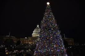 When Do They Light The Tree In Nyc U S Capitol Christmas Tree