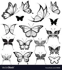 butterflies royalty free vector image vectorstock