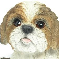 shih tzu resin garden ornament 23 74 garden4less uk shop