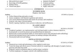 Auditor Resume Sample by Auditor Resume Summary Reentrycorps